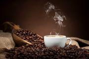 Všechno, co jste kdy chtěli vědět o kávě (ale báli jste se zeptat)…