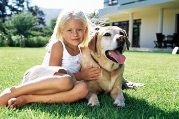 BHC00057262 fotokredit animalhealth.bayer.c